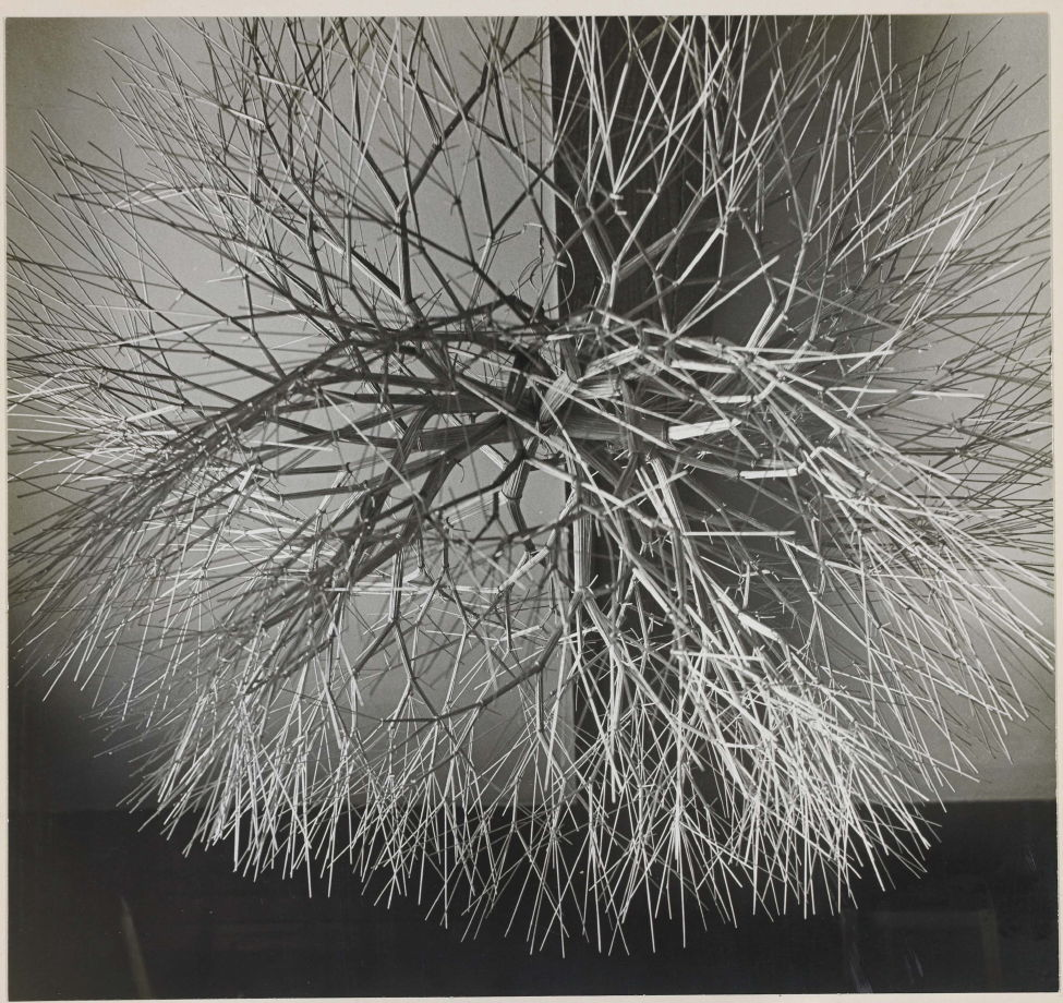 Untitled (Tied wire sculpture used for cover of Aperture monograph ...