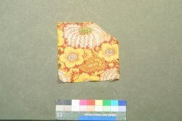 Printed cotton fragment(image duplicates .2)