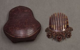 Comb with casemeasured case only