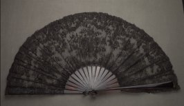 Lace fan with case
