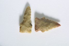2 Arrow Heads