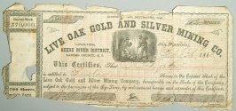 700 shares of Live Oak Gold and Silver Mining Co.