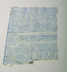 Fragment of a paisley shawl?