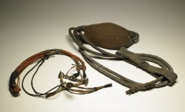 Bridle and brass bit