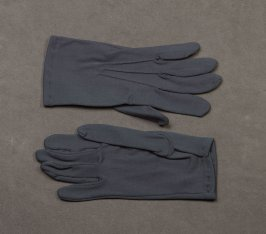 Pair of gloves: gray