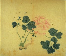 Tree Peony, No.2 from Volume I(1+2) on Miscellaneous Subjects - from: The Treatise on Calligraphy and Painting of the Ten Bamboo Studio
