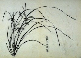 One from the Volume on Orchids - from: The Treatise on Calligraphy and Painting of the Ten Bamboo Studio