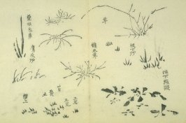 Ink study. Grasses - No.40 from the Volume on Orchids - from: The Treatise on Calligraphy and Painting of the Ten Bamboo Studio