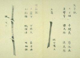 Ink study. Seven stalk and joined strokes - No.22 from the Volume on Bamboo - from: The Treatise on Calligraphy and Painting of the Ten Bamboo Studio