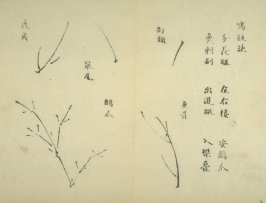 Ink study. Five twigs - No.24 from the Volume on Bamboo - from: The Treatise on Calligraphy and Painting of the Ten Bamboo Studio