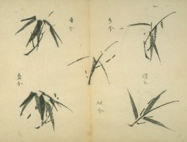 Ink study. Five leaves - No.26 from the Volume on Bamboo - from: The Treatise on Calligraphy and Painting of the Ten Bamboo Studio
