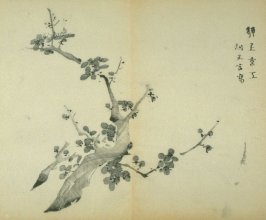 One from the Volume on Plums - from: The Treatise on Calligraphy and Painting of the Ten Bamboo Studio