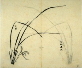 Ink study. The same as No.4, with two flowers added - No.5 from the Volume on Orchids - from: The Treatise on Calligraphy and Painting of the Ten Bamboo Studio
