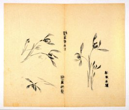 Ink study. Three examples: One blossom, three blossoms and four blossoms - No.32 from the Volume on Orchids - from: The Treatise on Calligraphy and Painting of the Ten Bamboo Studio