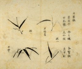 Ink study. Four leaves - No.25 from the Volume on Bamboo - from: The Treatise on Calligraphy and Painting of the Ten Bamboo Studio