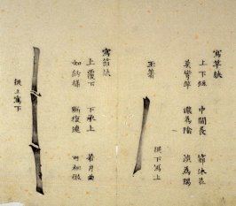 Ink study.Two stalks - No.21 from the Volume on Bamboo - from: The Treatise on Calligraphy and Painting of the Ten Bamboo Studio