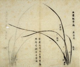Ink study. Five leaves, one very short, growing toward left - No.2 from the Volume on Orchids - from: The Treatise on Calligraphy and Painting of the Ten Bamboo Studio