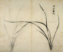 Ink study. Six leaves, one very short, bent to left- No.6 from the Volume on Orchids - from: The Treatise on Calligraphy and Painting of the Ten Bamboo Studio