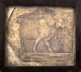 Frieze fragment of a striding bull (hindquarters and legs broken off)