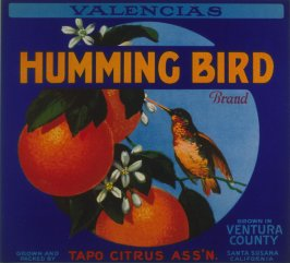 Orange crate label-Humming Bird Brand Valencias