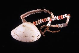 Necklace with one large shell