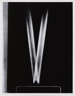 Time Exposure of a Light Beam, from The Science Pictures