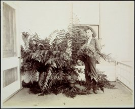 Untitled (Man with ferns)