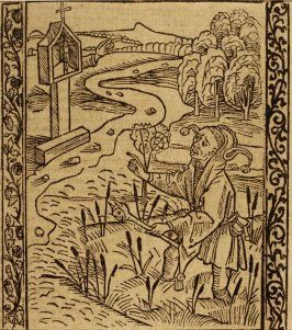 "Accusing Fool: woodcut illustration for the original edition of the ""Narrenschiff"" (Ship of Fools), taken from the Latin reprint edition Basel"