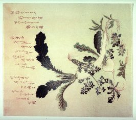 Untitled (Radishes and Summer Herbs)