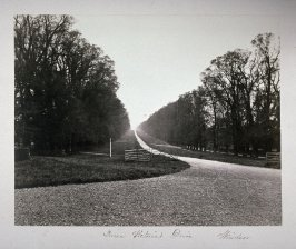 Queen Victoria's Drive, Windsor