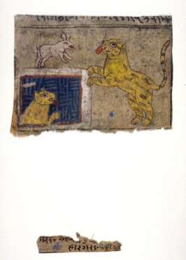 Recto:Tiger and a Dog, illustration to an unidentified fableVerso:Man and Garuda , illustration to an unidentified fable