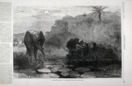 """Elephant-shooting by moonlight - The River Ambuscase"" from Harper's Weekly, (May 5, 1877), p. 359"