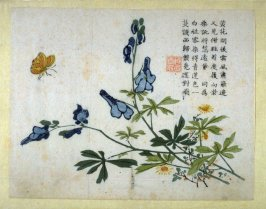 Larkspur and Butterfly from the Mustard Seed Garden Manual of Painting, Volume III (on plants and insects), Part 2
