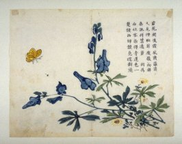 Larkspur and Butterfly - from: The Mustard Seed Garden Manual of Painting, Volume III, part 2