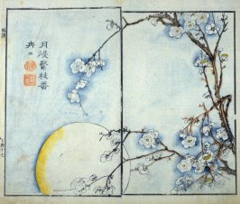 Plum Blossom in Moonlight - from: The Mustard Seed Garden Manual of Painting, Volume II (on Orchids, Bamboo, Plums and Chrysanthemums)
