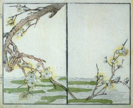 Blossoming Plum Tree Branch Hanging in Water - from: The Mustard Seed Garden Manual of Painting, Volume II (on Orchids, Bamboo, Plums and Chrysanthemums)