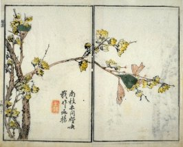Tree in Blossom - from: The Mustard Seed Garden Manual of Painting, Volume III (on Plants and Insects)