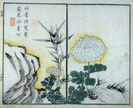 Chrysanthemum, Bamboo and Rock - from: The Mustard Seed Garden Manual of Painting, Volume II (on Orchids, Bamboo, Plums and Chrysanthemums)