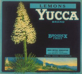 Yucca Brand Lemons, Index Mutual Association, La Habra Valley, Des Moines, California