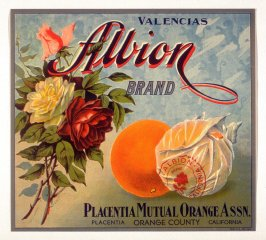 Albion Brand Valencias, Placentia Mutual Orange Assn., Placentia Orange County, California