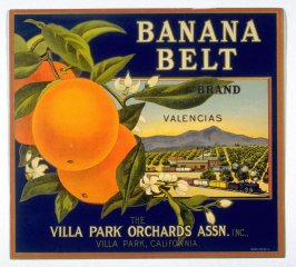 Banana Belt Brand Valencias, The Villa Park Orchards Assn. Inc., Villa Park, California