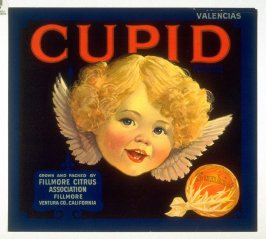 Cupid Valencias, Sunkist, Fillmore Citrus Association, Fillmore, Ventura Co., California