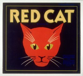 Red Cat, Villa Park Orchards Assn. Inc., Villa Park, Orange Co., California, U.S.A.