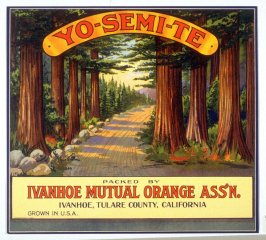 Yo-Semi-Te, Ivanhoe Mutual Orange Assn., Ivanhoe, Tulare County,California