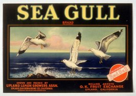 Sea Gull Brand, Upland Lemon Growers Assn., Upland, San Bernardino Co., California