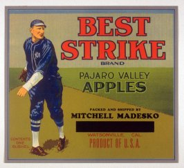 Best Strike Brand, Pajaro Valley Apples, Mitchell Madesko, Watsonville, California