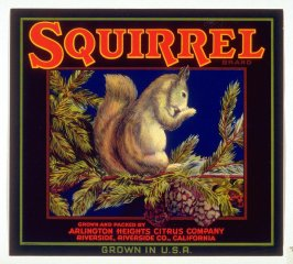 Squirrel Brand, Arlington Heights Citrus Company, Riverside, Riverside Co., California