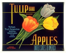 Tulip Brand Apples, Perham Fruit Corporation, Yakima, Washington