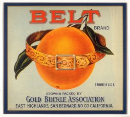 Belt Brand, Gold Buckle Association, East Highlands, San Bernardino Co., California