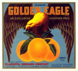 Golden Eagle Valencias, Placentia Orchard Company, Fullerton, Orange Co., California